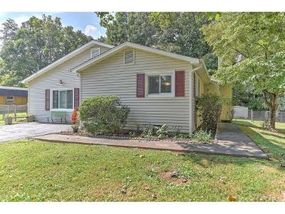 Johnson City Single Family Home For Sale: 2616 Austin Village Blvd