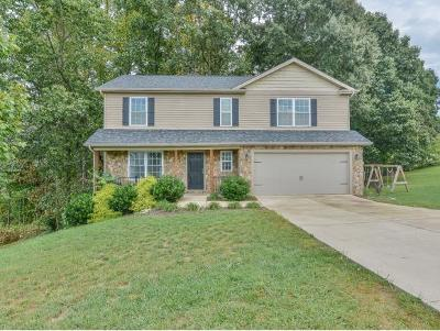Jonesborough Single Family Home For Sale: 215 Holland View Drive