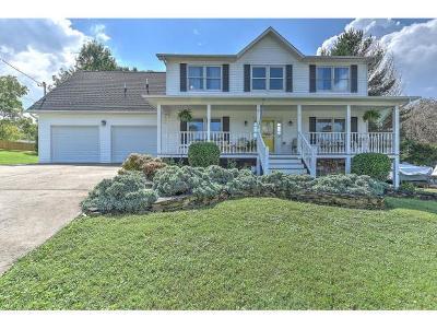 Johnson City Single Family Home For Sale: 4 Deerpark Lane