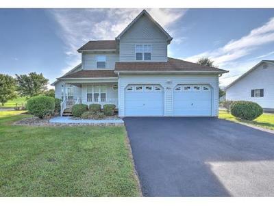 Elizabethton Single Family Home For Sale: 221 Blue Springs Road