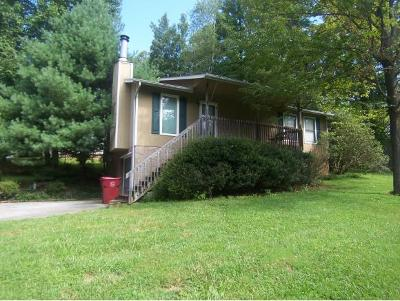 Johnson City Single Family Home For Sale: 1844 Glen Echo Rd