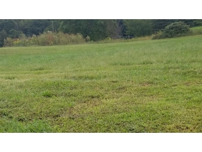 Unicoi Residential Lots & Land For Sale: Lot #2 Paydens Way