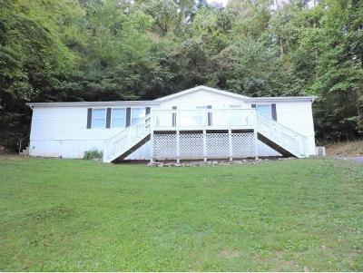 Kingsport Single Family Home For Sale: 1560 Randich Dr