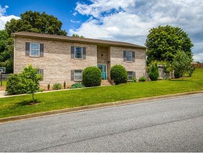 Johnson City Single Family Home For Sale: 17 Larchmont Lane