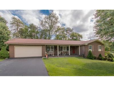 Bristol Single Family Home For Sale: 7268 Southern View Road