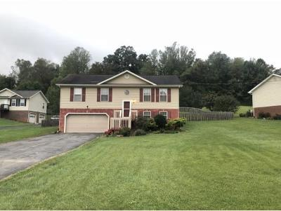 Jonesborough Single Family Home For Sale: 222 Maple Ridge Dr
