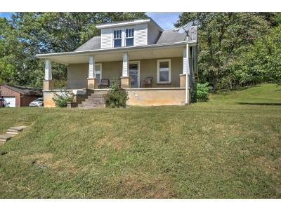 Kingsport Single Family Home For Sale: 1109 Skelton Bluff Rd