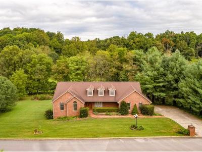 Jonesborough Single Family Home For Sale: 1150 Hidden Valley Drive