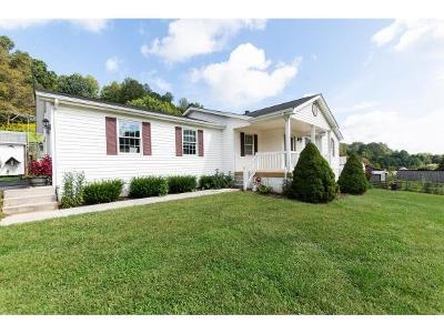 Abingdon Single Family Home For Sale: 16499 Rich Valley Rd
