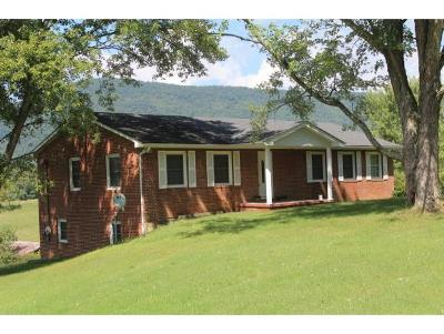 Greeneville Single Family Home For Sale: 356 McAmis Road