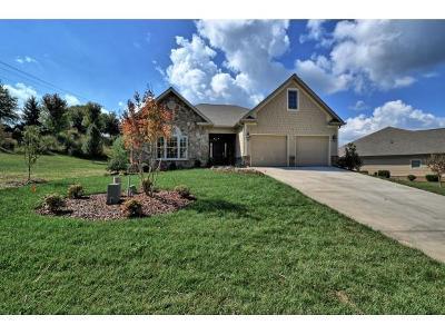 Jonesborough Single Family Home For Sale: 106 Cypress Ridge Ct.