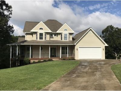 Piney Flats TN Single Family Home For Sale: $439,900