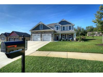 Johnson City Single Family Home For Sale: 324 Laurel Canyon