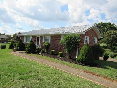 Greeneville Single Family Home For Sale: 45 Mays St