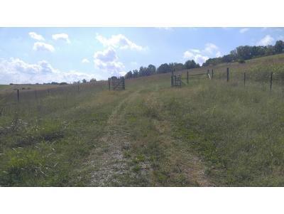 Washington-Tn County Residential Lots & Land For Sale: 253 Carson Creek Rd