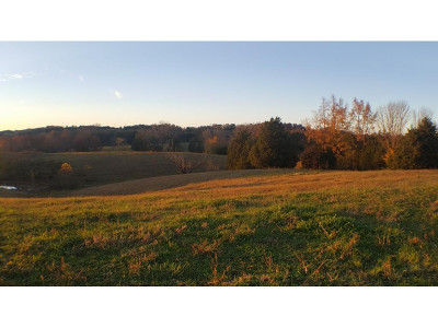 Greene County Residential Lots & Land For Sale: Valleydale Rd