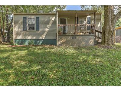 Johnson City Single Family Home For Sale: 1230 Indian Ridge Road