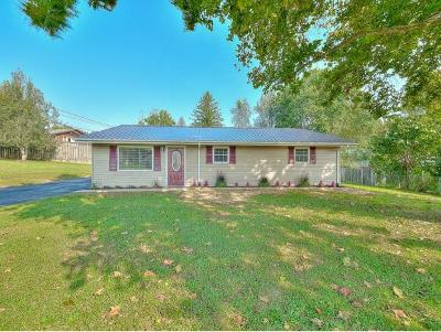 Johnson City Single Family Home For Sale: 2804 Windwood Drive