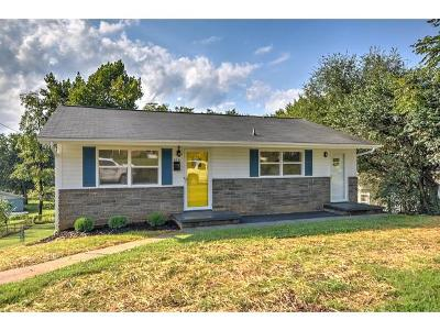 Johnson City Single Family Home For Sale: 509 W Magnolia Ave