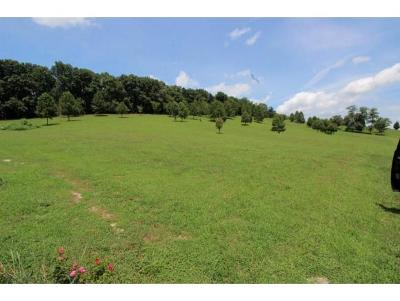Washington-Tn County Residential Lots & Land For Sale: 628 A A Deakins