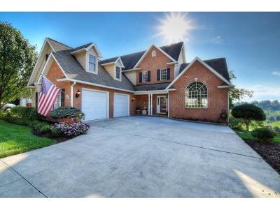Gray Single Family Home For Sale: 226 Michaels Ridge Blvd