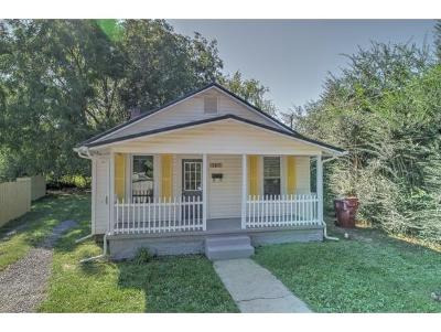 Johnson City Single Family Home For Sale: 707 Lehigh Street