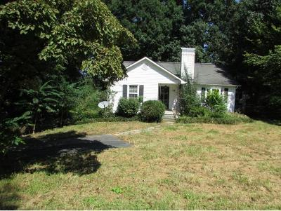 Johnson City Single Family Home For Sale: 156 Woodland Drive