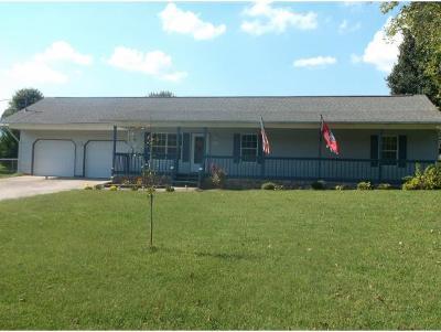 Rogersville Single Family Home For Sale: 145 Stewart Hills Dr