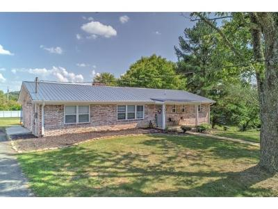 Greeneville Single Family Home For Sale: 902 Martingale Dr
