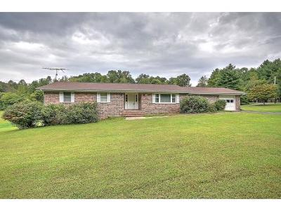 Single Family Home For Sale: 226 Bayless Road