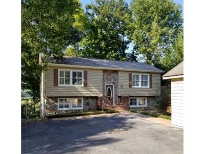 Johnson City Single Family Home For Sale: 1105 Quail Harbour Drive