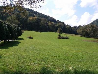 Residential Lots & Land For Sale: Old Hwy 19-E