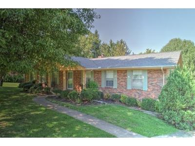 Greeneville Single Family Home For Sale: 208 Skyview Drive