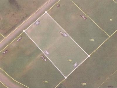 Residential Lots & Land For Sale: Lot 17B Stanley Valley Rd
