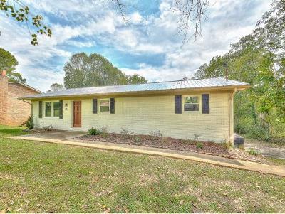 Kingsport Single Family Home For Sale: 432 Light Street