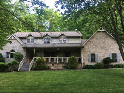 Damascus, Bristol, Bristol Va City Single Family Home For Sale: 336 Spring Valley Drive