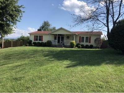 Elizabethton Single Family Home For Sale: 135 Lewis Blevins Rd