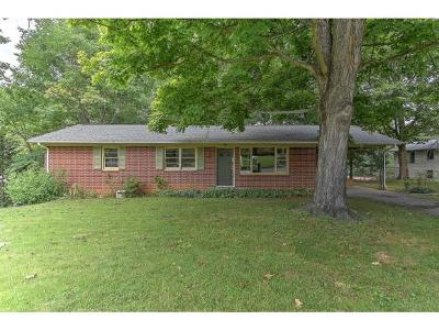 Johnson City Single Family Home For Sale: 4001 E. Englewood