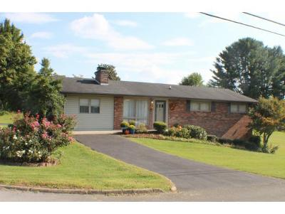 Kingsport Single Family Home For Sale: 500 S. Valley View Circle