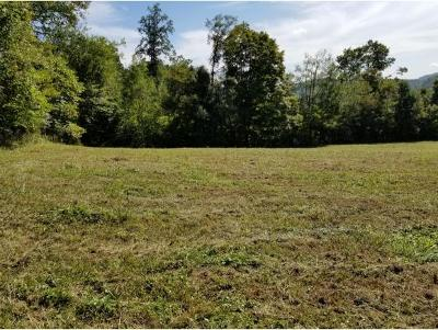 Residential Lots & Land For Sale: Jackson Road