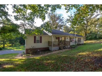 Jonesborough Single Family Home For Sale: 164 Hardin Drive
