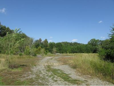 Residential Lots & Land For Sale: TBD Colonial Road
