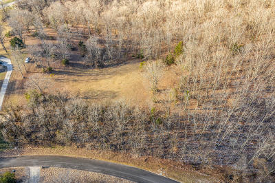 Residential Lots & Land For Sale: 9043 Paradise View Dr