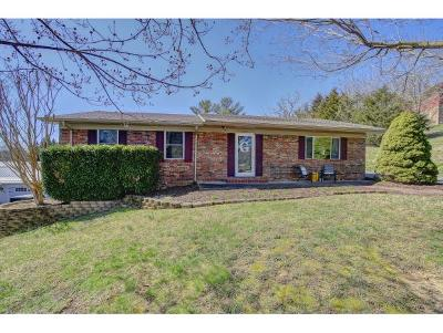 Johnson City TN Single Family Home For Sale: $189,900