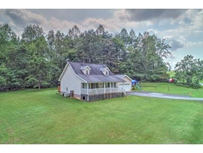 Blountville Single Family Home For Sale: 379 Red Bud Lane