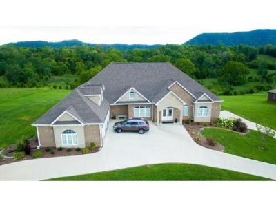 Rogersville Single Family Home For Sale: 154 Dawn Lane