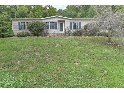 Rogersville Single Family Home For Sale: 688 War Valley Rd