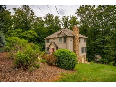 Single Family Home For Sale: 261 Allison Cove Trail