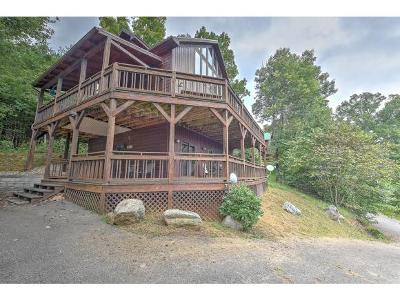 Butler Single Family Home For Sale: 341 Lake Cabin Ln