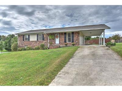 Blountville Single Family Home For Sale: 305 Fain Rd
